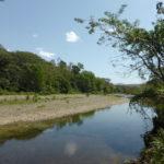 Der Fluss Juan de Leon - Blick nach Süden