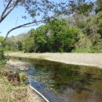 Der Fluss Juan de Leon im Süden unseres Grundstücks - Blick nach Norden